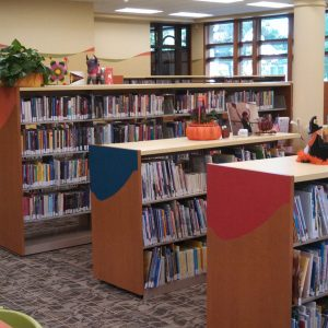 Portage-Public-Library-Shelving